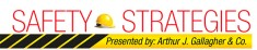 Safety Strategies logo